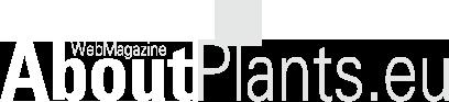 AboutPlants | Web Magazine